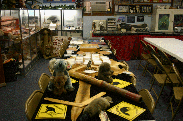 Creation Adventures Museum clasroom.